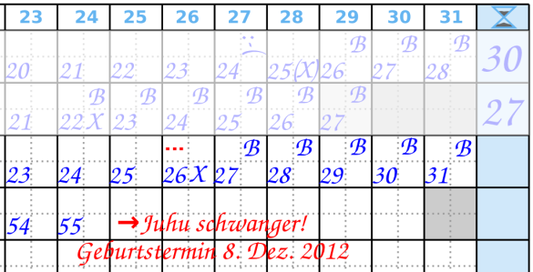 Zyklusende Beispiel 3 Menstruationskalender