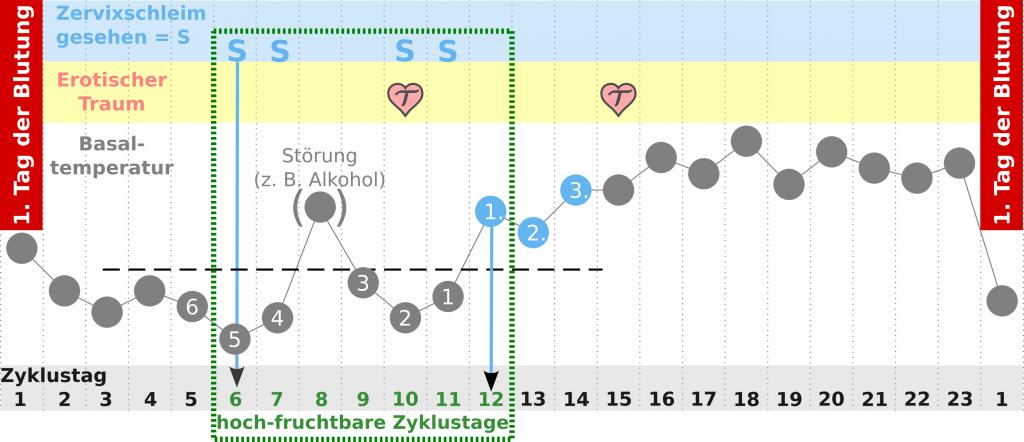 Anzeichen-Eisprung-Traum-Zyklus-einfach
