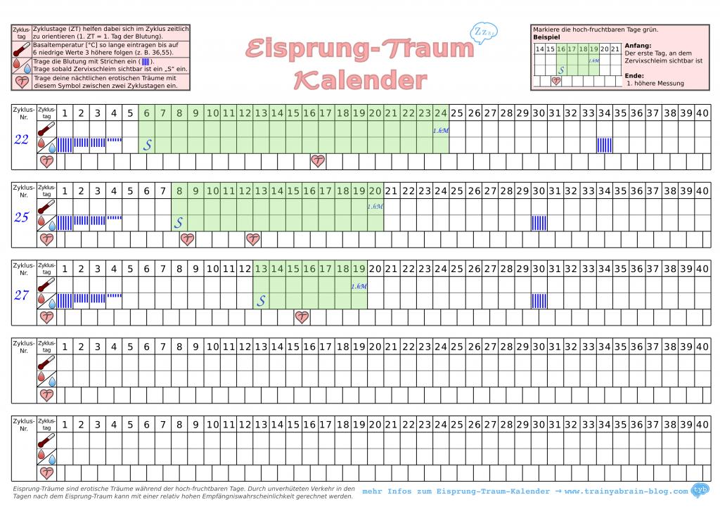 Eisprungkalender-Traum-Menstruationszyklus-Beispiel2
