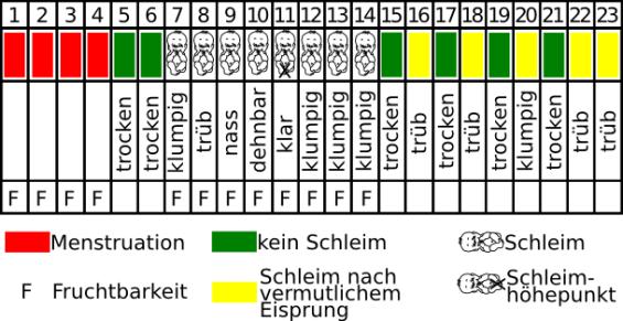 Billingsmethode-Zyklusblatt-Zervixschleim
