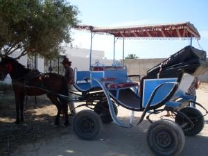 Kutsche-auf-Djerba