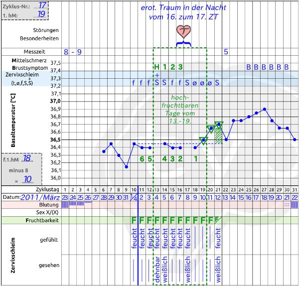 Eisprung-Traum-Experiment-Natuerliche-Familienplanung-Zyklusblatt
