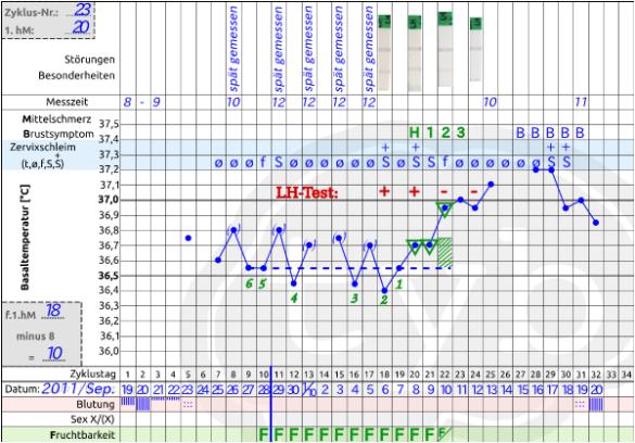 Ovulationstest,LH-Test im Zyklusblatt, Eisprung
