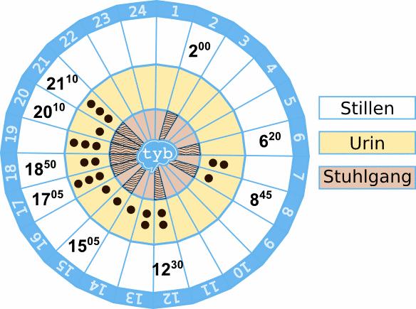 Zeitkreis-stillen-ausscheidungen-windelfrei