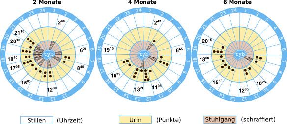 2-4-6-Monate-Baby-im-Vergleich