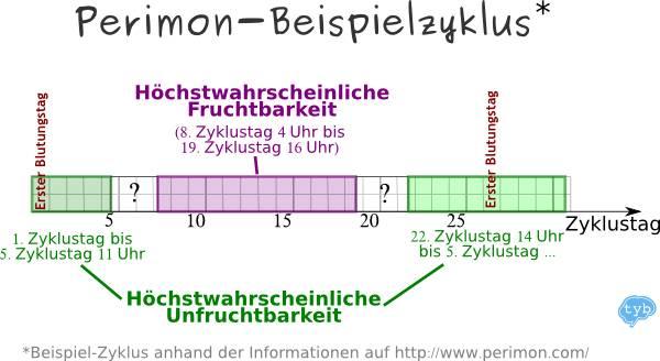 Perimon-Beispiel-Zyklus