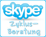 skype-zyklus-beratung
