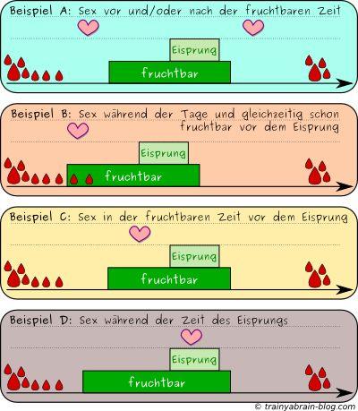 sex-zyklus-beispiele