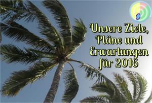 Unsere Ziele, Pläne und Erwartungen für das Jahr 2016