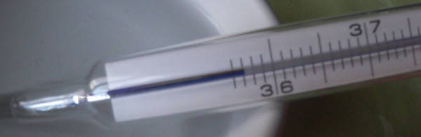 repariertes analoges thermometer