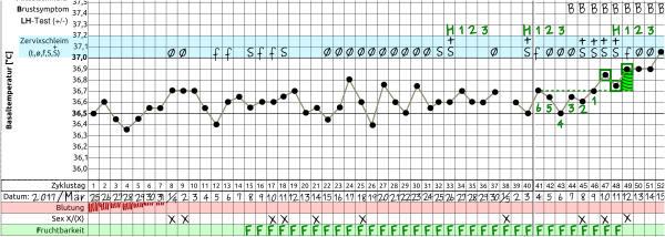PCOS Zyklus mit Temperatur