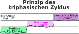 Triphasische Kurve - Temperaturkurve
