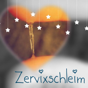 Zervixschleim deuten