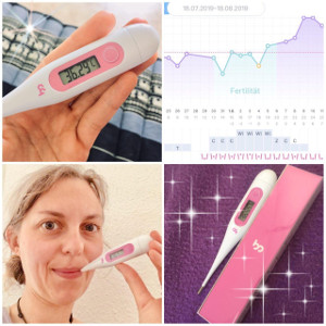 Femometer App Erfahrungen