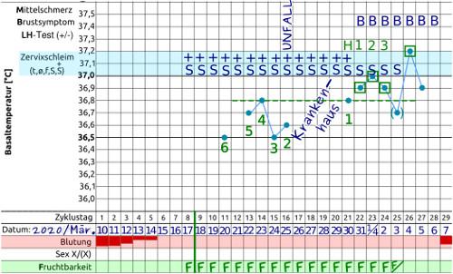 Basaltemperaturkurve NFP - 2. Zyklus