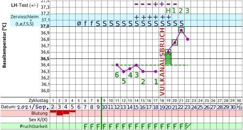 Femometer Ovulationstest