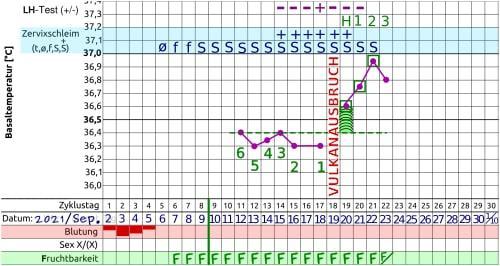 Zykluskurve One Step Ovulationstest